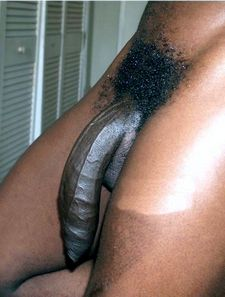 Black Cock In A Fat Black Pussy Close Up